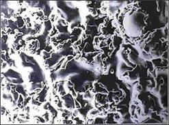 PET不織布に光触媒溶射(SEM※2300)